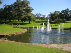 Lovely area at King's Park, Perth.