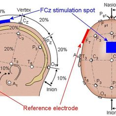 The electrode placement positions for the Vanderbilt study (Image: modified by Author) Istanbul New Airport, Brain Mapping, Neuroscience, Mbti, Science And Technology, Biology, Helping People, Psychology, Physical Therapy