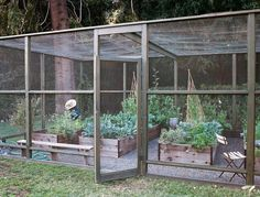 Screened in garden with raised beds to protect crops from deer and other critters. Located in the Bel Air neighborhood of Los Angeles, CA, designed by Lauri Kranz, photos by Brian W. Ferry Photography.