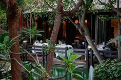 Hoteles 5 estrellas - Restaurante In Black | Hotel Asia Gardens
