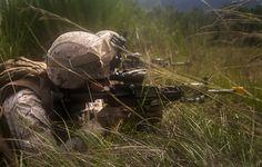 Deep in the weeds (U.S. Marine Corps photo by Sgt. Austin Hazard/Released)