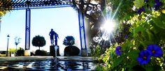 El Caminante y Su Sombra.Bluesman: El Gorjeo de tu Agua…