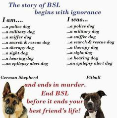 End BSL (Breed Specific Legislation)! Pitbulls are amazing dogs, just like so many other breeds. A poorly behaved dog means a bad owner.