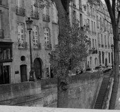 Presencias en la noche: PARIS