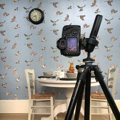 The shot through the lens. Our new Early Bird wallpaper set in a kitchen scene. Image taken by @firstlightwed #photoshoot #behindthescenes #wallpaper #wallcoverings #metallicwallpaper #birds #drawing #illustration #design #detail #inspiration #interiors #kitchen #homedecor #luxury #lifestyle #interiordesign
