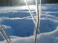 Ice crystals Ice Crystals, Winter Scenes, Winter White, Mother Nature, Seasons, Mountains, Frost, Travel, Magic
