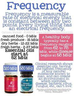 Young Living Essential Oils Frequency #youngliving #essentialoils ORDER HERE: HeavenScentOils4U.com