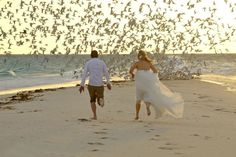 4* Sea Cliff Resort & Spa - Zanzibar 4 Nights | Thompsons Holidays Sea Cliff, Resort Spa, Holidays, Night, Animals, Holidays Events, Animales, Animaux, Holiday