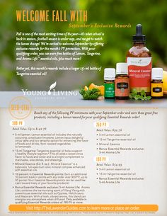 September Young Living Essential Oil Monthly Specials & Freebies | The Lavender Guides
