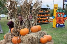 HENDERSONVILLE NC APPLE ORCHARD-COSTON FARM & APPLE HOUSE-PUMPKINS-GIFT SHOP – Apples-Pumpkins-Bakery-Gift Shop