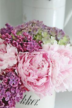 Å la være å ta bilder av alle vakre blomster man omgir seg med nå om dagene...så igjen kommer et nytt BLOMSTER GLEDE innlegg! Helt til sl...