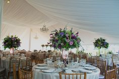 Pin by lessen edward on wedding inspiration pinterest tents philadelphia and san antonio photography for people who love love philadelphia and san antonio wedding and portrait photography junglespirit Choice Image