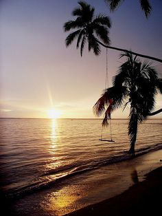 Fiji - think that swing is still there and that we could find it!? lol