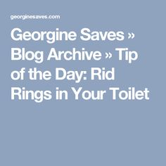 Georgine Saves » Blog Archive » Tip of the Day: Rid Rings in Your Toilet