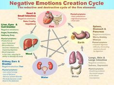 NegativeEmotions harm your overall wellness and health. The organ system can be damaged by emotions such as Anger, Anxiety, Hate, Obsession, Empathy, Stress. For example: Anger : Weakens the Liver Grief : Weakens the Lung Worry: Weakens the Stomach Stress : Weakens the Heart and Brain Fear : Weakens the Kidney Five-Elements Theory - TCM (Traditional Chinese Medicine)