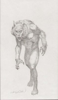 Bernie Wrightson - Werewolf, in Shawn Fritschy's Bernie Wrightson Comic Art Gallery Room Frankenstein, Bernie Wrightson, Werewolf Art, Monster Drawing, Vampires And Werewolves, Animal Sketches, Environmental Art, Fantastic Art, Creature Design