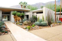 Required Reading: The Mid-Century Modern Garden by Ethne Clarke - Gardenista In mid-century gardens, a scattering of shrubs was low maintenance yet stylish. Photograph by Steve Martino. In modern c. Modern Landscape Design, Modern Garden Design, Contemporary Garden, Landscape Plans, Desert Landscape, Succulent Landscaping, Front Yard Landscaping, Landscaping Ideas, Mid Century Landscaping