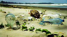 Impacts différentes peintures santé environnement