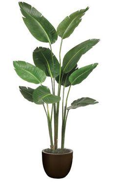 Small Artificial Plants, Artificial Plant Wall, Fake Plants, Hanging Plants, Artificial Flowers, Plants Indoor, Indoor Herbs, Indoor Gardening, Cactus Plants