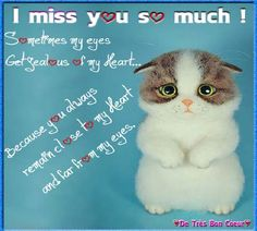 Out of Sight but close to Heart!  Send this Cute Kitten to your loved ones to convey the message that you #Miss them. www.123greetings.com
