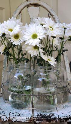 white flowers in mason jars <3
