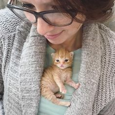 Love this post? See more here: http://www.thecatsclub.com #Cat #Cats #CatLovers #Kitten #Kittens #Animals #CuteAnimals #Pet #Pets #CuteCats #Caturday #CatOfTheDay #CatBreeds