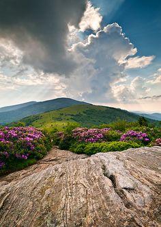 Roan Mountain, TN.   beautiful area in the mountains