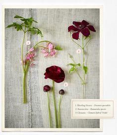 Wedding Flowers Guide – BHLDN