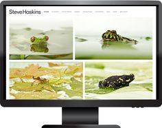Steve Hoskins is an animal and wildlife photographer who's worked with numerous international brands, such as Andrex, Pedigree, Mars, Whiskas, Purina, Hills, Lexus, Land Rover and Lloyds. We rebuilt his website, ensuring that his stunning work takes centre stage. Our developer also added code to alter the gallery cursor, create a different hover effect on images with captions and change the video overlay.