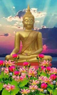 Punnaji Maha Thera on August 2018 at Buddhist Gem Fellowship (BGF), Ara Damansara. Buddha Garden, Buddha Zen, Gautama Buddha, Golden Buddha, Amazing Gifs, Incredible India, Morning Greetings Quotes, Beautiful Nature Wallpaper, Guanyin
