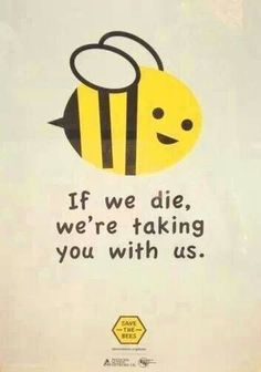 Funny pictures about Save The Bees Or Else. Oh, and cool pics about Save The Bees Or Else. Also, Save The Bees Or Else photos. Bee Friendly, Save The Bees, Bee Happy, Bees Knees, Queen Bees, Bee Keeping, In This World, Words, Honey Bees