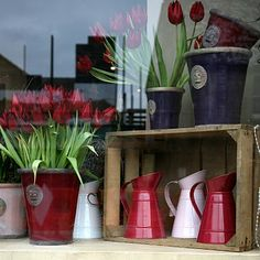 flower shop windows | this valentine s day i have the pleasure of fond memories the chance ...