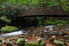 Jones Gap State Park, near Marietta, SC Wonderful Places, Great Places, Places To Visit, Park Trails, Hiking Trails, South Carolina Attractions, Beach Camping, Best Hikes, Day Trip
