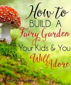 Quick & Easy Steps to Build a Fairy Garden - fun for all ages! - Picmia