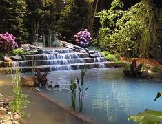 This lovely garden pool is beautiful beyond words. The natural plantings, the sounds of running water and the lighting all make this a serene oasis in this garden.Who wouldn't want to relax and enjoy this.