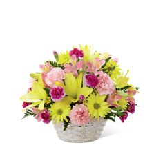 The FTD® Basket of Cheer® Bouquet sends your warmest wishes for happiness with each sunlit bloom! Yellow Asiatic lilies and traditional daisies are vibrant and beautiful arranged amongst pink carnations, pink Peruvian lilies and magenta mini carnations. Accented with lush greens and presented in a round whitewash handled basket, this arrangement is a sweet sentiment brought together to brighten your special recipient's day.