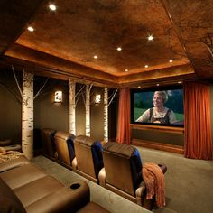 Theater Room Ideas Design Ideas, Pictures, Remodel, and Decor - page 9