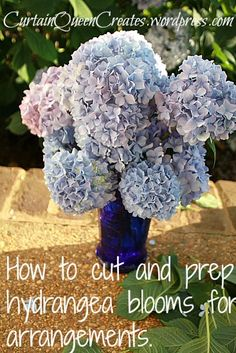 Create Your Own Beautiful Floral Centerpieces and Decor ! How to Cut And Prep Hydrangea Blooms For Arrangements !