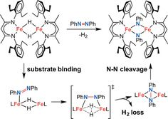 The Mechanism of N–N Double Bond Cleavage by an Iron(II) Hydride Complex - Journal of the American Chemical Society (ACS Publications)