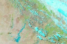Rivers Swell in Channel Country : Image of the Day : NASA Earth Observatory