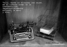 V.A.N: #aldo
