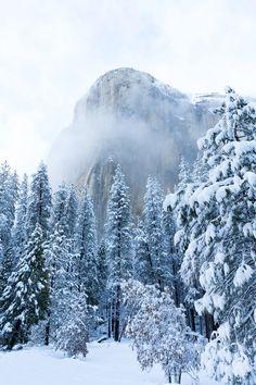 El Capitan Appears After Snowstorm Yosemite CA [OC] [13652048] #reddit
