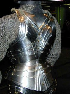 Enter your pin description here. Knight Armor, Arm Armor, Medieval Armor, 15th Century, Show Horses, Gothic, German, Armours, Thesis