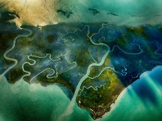 salt marsh | salt-marsh-aerial-virginia_86770_990x742.jpg