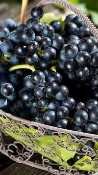 Kieliszek czerwonego wina i ciemne winogrona - Tapeta na telefon Nasu, Fruit, Food, Essen, Meals, Yemek, Eten