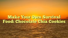 Make Your Own Survival Food: Chocolate Chia Cookies - https://twitter.com/pdoors/status/778761960611389440