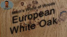 European White Oak - Mitch's World of Woods White Oak, Peacock, Woods, Woodland Forest, Peacocks, Forests, Peafowl, Wood