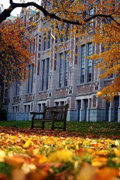 Univ of Washington's architecture in the Quad