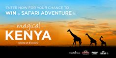 a FREE Kenya Safari from TravelAlerts, Kenya Tourism Board, KLM, and Indus. Enter NOW for your chance! Ends June 2014 at noon Eastern. Void in QC. Canadian Contests, Safari Adventure, Urban Barn, Check It Out, Kenya, Giveaways, Places To Go, Tourism, Trips