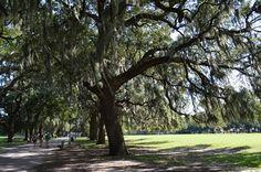 Savannah Georgia – America's Most Haunted City